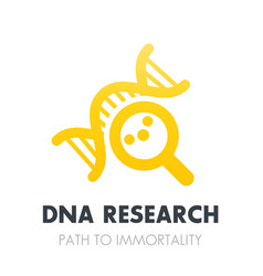 Dna research genetics icon over white vector