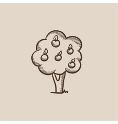 Fruit tree sketch icon vector image