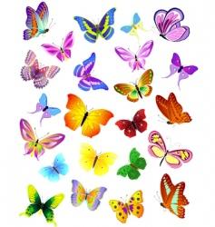 set of different butterflies vector image