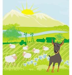 sheeps and dog vector image