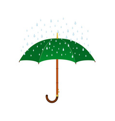 Umbrella in green design and rain vector