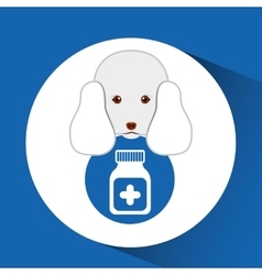 Digital pet shop with poodle and container vector