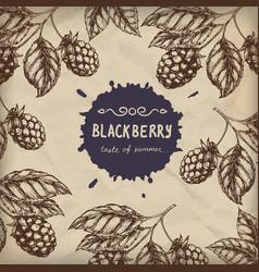 blackberry raspberry design template blackberry vector image vector image