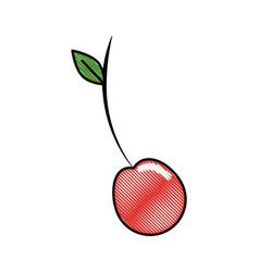 Cherry fruit food vector