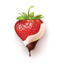 strawberry chocolate black and white vector image vector image