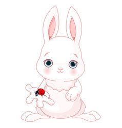 cute bunny holds lady bug vector image