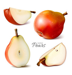 pears whole and slices vector image