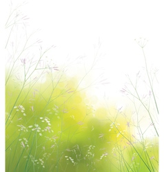 Spring floral field vector