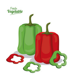 Fresh vegetables green and red pepper spice vector