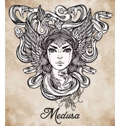 Mythological medusa portriat vector