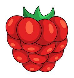red berry icon cartoon style vector image vector image