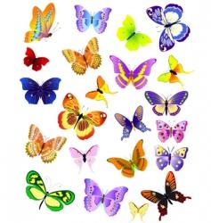 set of different butterflies vector image vector image
