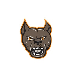 Pitbull Dog Mongrel Head Angry Cartoon vector image