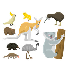 Australia wild animals cartoon popular nature vector