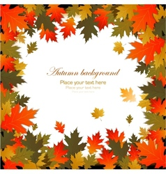 Background autumn leaves frame vector image