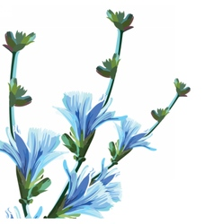 Beautiful watercolor blue yellow flowers vector