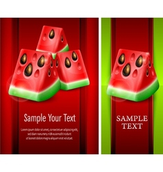 Watermelon banner vector image vector image