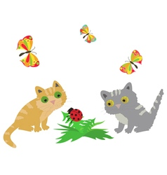 2 cats ladybug and butterflys vector