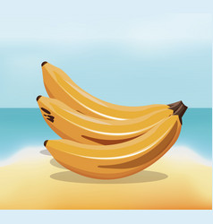 Banana fruit fresh harvest - beach background vector