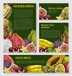Exotic tropical fruit banner poster template set vector