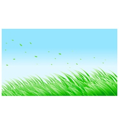 green grass against blue sky vector image vector image