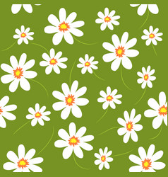Floral seamless pattern daisy field vector