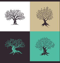 Beautiful magnificent olive tree silhouette vector