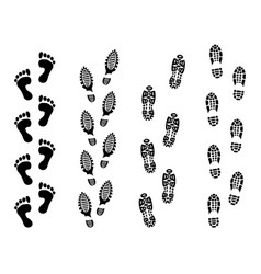 footsteps isolate on white background footprint vector image vector image
