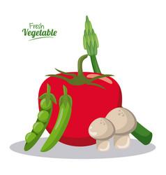 Fresh vegetables tomato mushroom pea pot asparagus vector