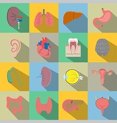 Human organs flat style icons vector