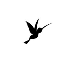 sign silhouette of a hummingbird vector image vector image