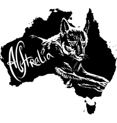 Dingo on map of Australia vector image
