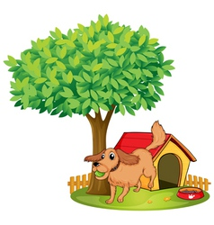 A dog playing beside a doghouse under a tree vector