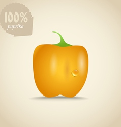 Cute fresh yellow paprica vector image vector image