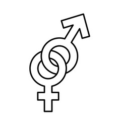 female and male symbol isolated icon vector image vector image