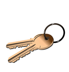 golden keys vector image