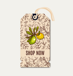 tags sale in eco-style vector image