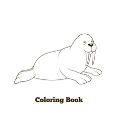 Walrus cartoon coloring book vector