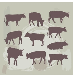 cow set silhouette on grunge background vector image vector image