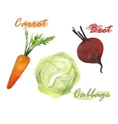 Vegetables watercolor set vector