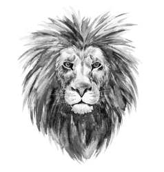 Watercolor lion vector image vector image