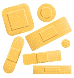 plasters icon vector image