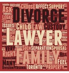 How to choose a divorce lawyer in toronto text vector