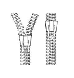 Two zipper vector