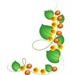 Fruit vine vector