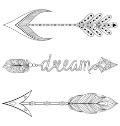 Bohemian Dream Arrows set with feathers for adult vector image