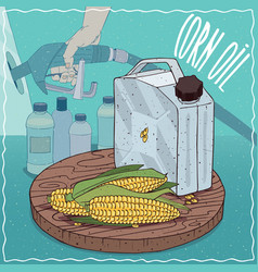 Corn oil used for fuel production vector
