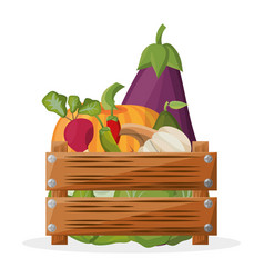 Wooden box with vegetables vegetarian image vector