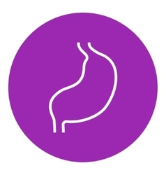Stomach line icon vector