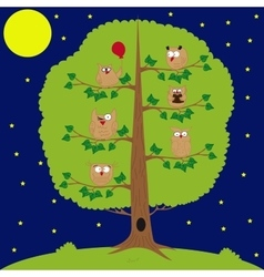 Owl sitting at night on the tree funny owls vector